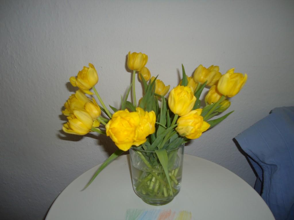 Schönes Tulpenbild